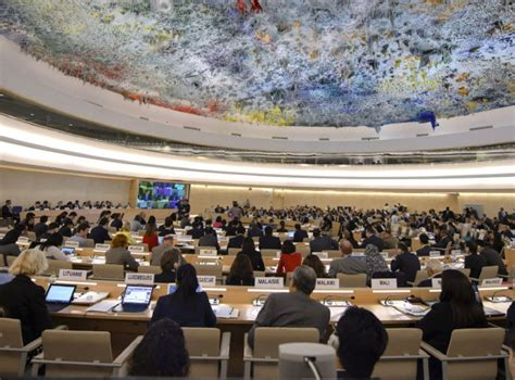 UN human rights inquiry on Gaza inherently biased   The Star